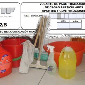 servicio-domestico-recibo- sueldo 04